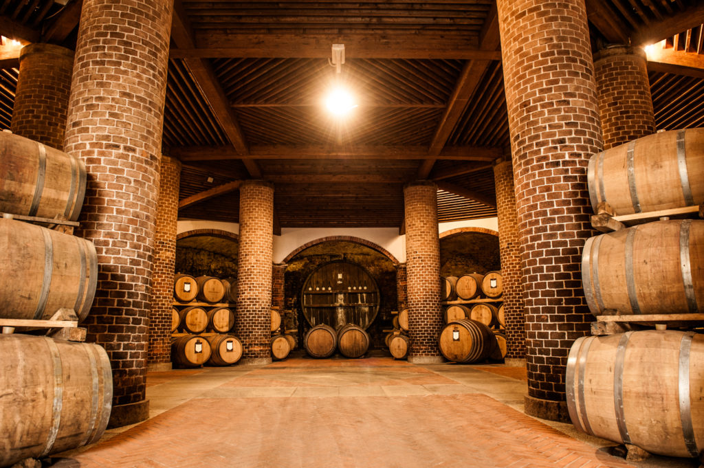 The cellars in the Langhe - Wine tradition in Piedmonti